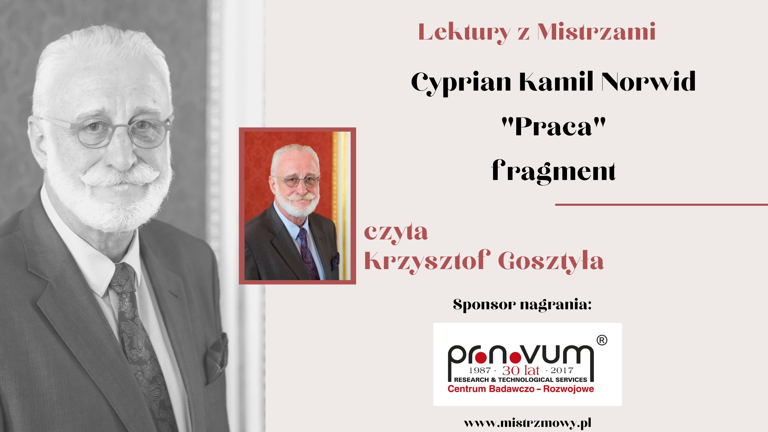 Cyprian Kamil Norwid - Praca